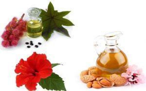 Миндальное масло для волос - свойства, польза, применение, маски