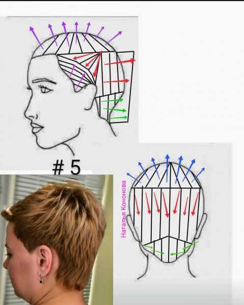 стрижка женская короткая схемы в картинках для