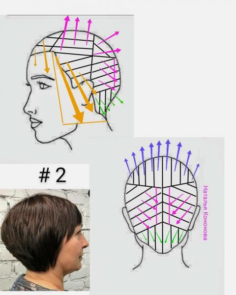 Обзор стрижек для женщин, в схемах. Часть 46